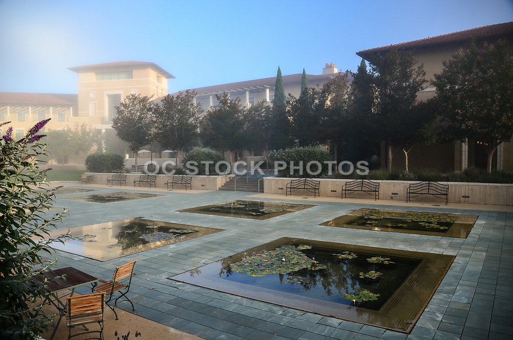 Lily ponds and Ikeda Library at Soka University in Aliso Viejo
