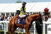 Don't Joke ridden by Franny Norton and trained by Mark Johnston - Ryan Hiscott/JMP - 19/04/2019 - PR - Bath Racecourse- Bath, England - Race 2 - Good Friday Race Meeting at Bath Racecourse