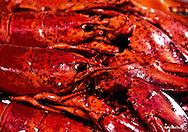 crayfish red lobster Norway Bergen
