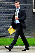 © Licensed to London News Pictures. 21/05/2013. Westminster, UK. Jeremy Hunt, Conservative MP, Secretary of State for Health.  Ministers arrive for a Cabinet meeting at Downing Street today 21 May 2013. Photo credit : Stephen Simpson/LNP