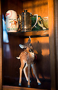 Dillie paraphernalia litters all the rooms in the Butera household. A small deer figurine from one of Melanie's employees stands in a living room cabinet.