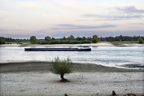 Nederland, the netherlands, Nijmegen, 18-10-2018 Binnenvaartschepen varen in de Waal langs de oever en de ooijpolder. Opname gemaakt in de avondschemering . Door de aanhoudende droogte staat het water in de rijn, ijssel en waal extreem laag . Laagterecord en de laagste officiele stand ooit bij Lobith gemeten, 6,73 m boven NAP . Schepen moeten minder lading innemen om niet te diep te komen . Hierdoor is het drukker in de smallere vaargeul . Door te weinig regenval in het stroomgebied van de rijn is het record verbroken . Foto: Flip Franssen