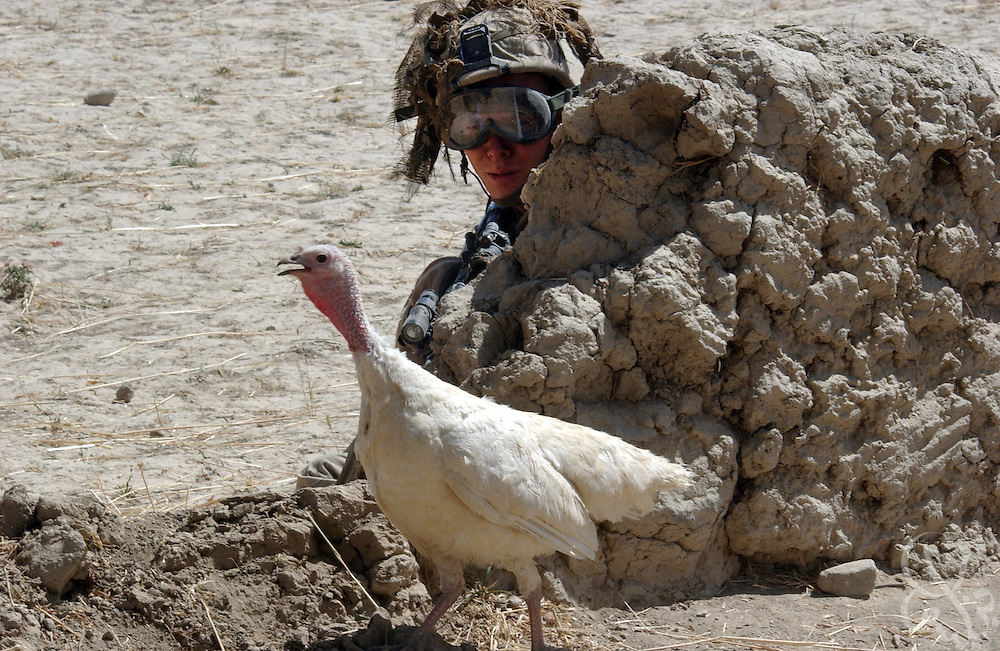 "A turkey walks by a U.S. Army 101st Airborne soldier during a U.S. Army ""sensitive site exploitation"" mission or SSE July 16, 2002 in village of Hesarak, eastern Afghanistan. The army raided the village to conduct a follow-up search for possible Al-Qaida or Taliban intelligence materials and to provide humanitarian aid. The raid was a follow-up to a similar raid there four days ago that yielded two detainees and undisclosed intelligence materials."
