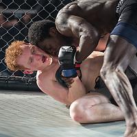 Kit Naughton vs. Tayo Udunjo