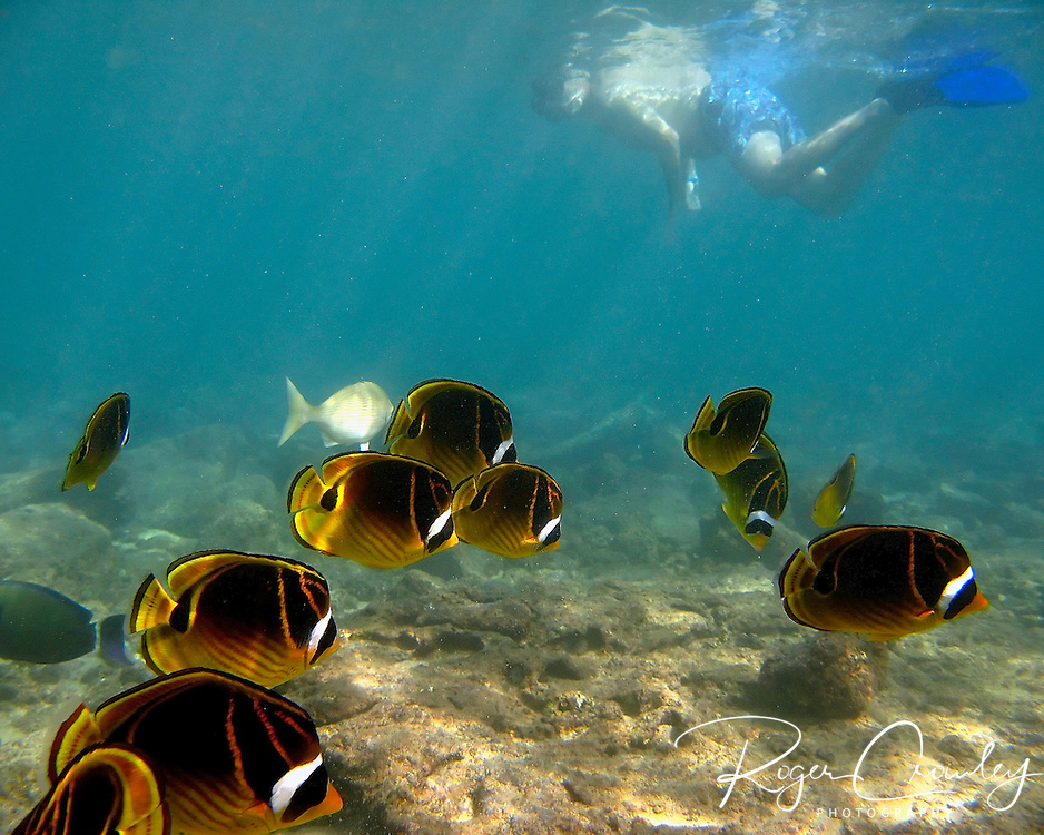 Lawa'i Beach is one of the best places to snorkel on the South Shore of Poi'pu Bay in Kaua'i Hawaii.