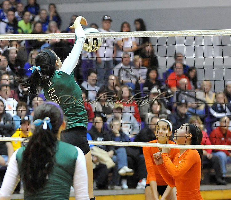 The Elyria Catholic varsity volleyball team battled Dalton in a regional semi-final contest at Barberton High School on November 2, 2011.