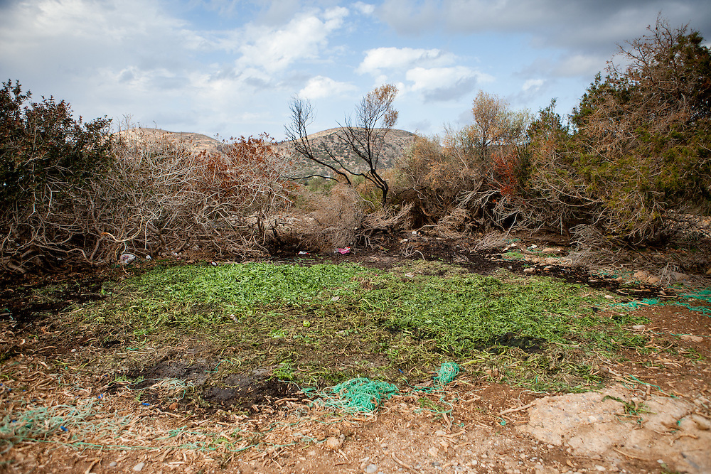 Remains of the vegetable harvest at the Lybian Sea Coast in Agia Kyriaki close to Palaiochora which is a small town in Chania regional unit on the island of Crete, Greece.