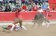 BEA AHBECK/NEWS-SENTINEL<br /> Amadores de Ramo Grande de Terceira's Cesar Pires is on the ground after an attempted grab during the bloodless bullfight during the Our Lady of Fatima Portuguese Festival in Thornton Saturday, Oct. 15, 2016.