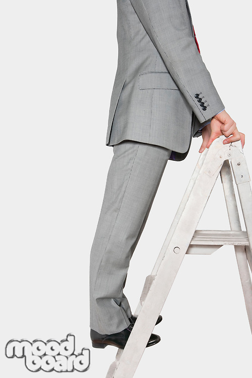 Low section view of a businessman standing on a ladder