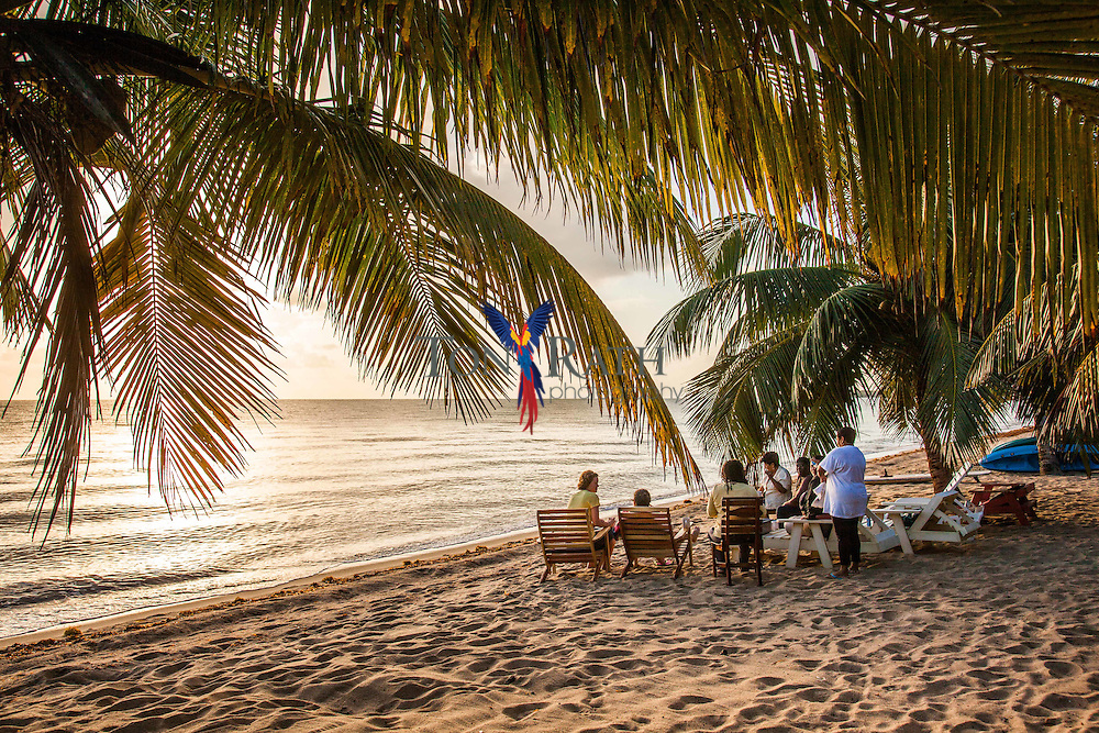 A group of women attending a yogo retreat at Jungle Jeanie by the Sea Resort meet on the beach at sunrise, Hopkins Village, Belize.