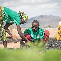 Cameroon - Environment work Minawao