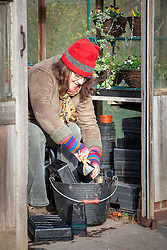 Tidying the greenhouse and washing pots in winter
