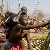 One of some 65,000 virgins puts her reed in the stockade at the Zulu royal palace in Nongoma, KwaZulu Natal, South Africa Sept 8, 2007. Thousands of virgin girls attend the annual Reed Dance at the Enyokeni palace from which the Zulu King Zwelethini may choose a bride. The king is expected to choose a bride. Photo Greg Marinovich / Bloomberg News
