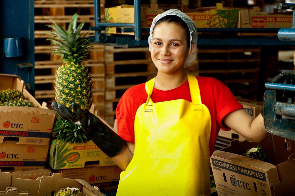 Costa Rica, La Virgen de Sarapiqui, Pineapple Factory