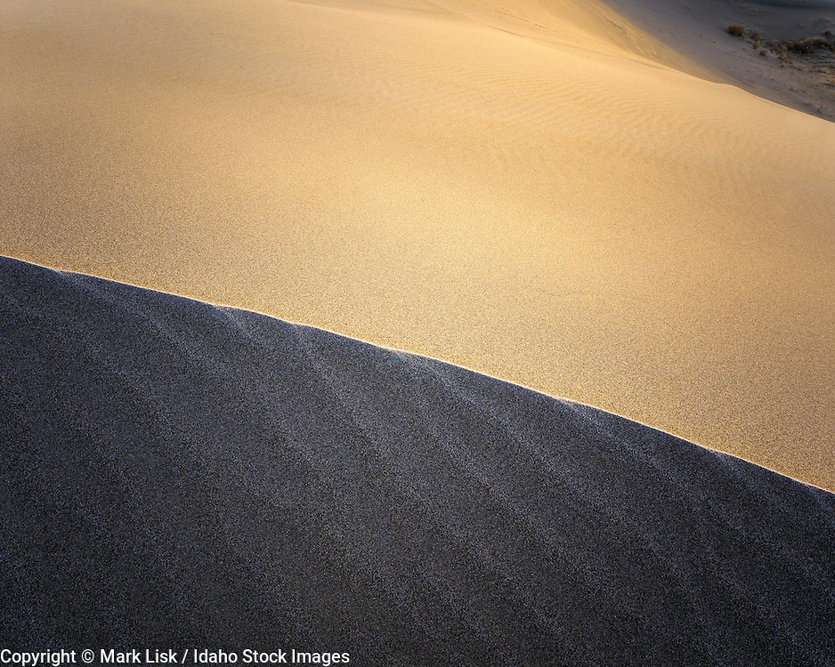Graphic detail of a sand dune at Bruneu Dunes State Park, Idaho.