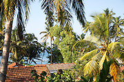 View over rooftops and palm trees to to blue ocean, Mirissa, Sri Lanka, Asia