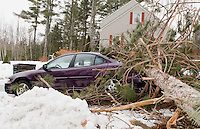 Storms causes damage throughout the area with downed trees and lost power February 26, 2010.