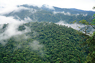 Rainforest ,Braulio Carrillo National Park, Costa Rica.<br />