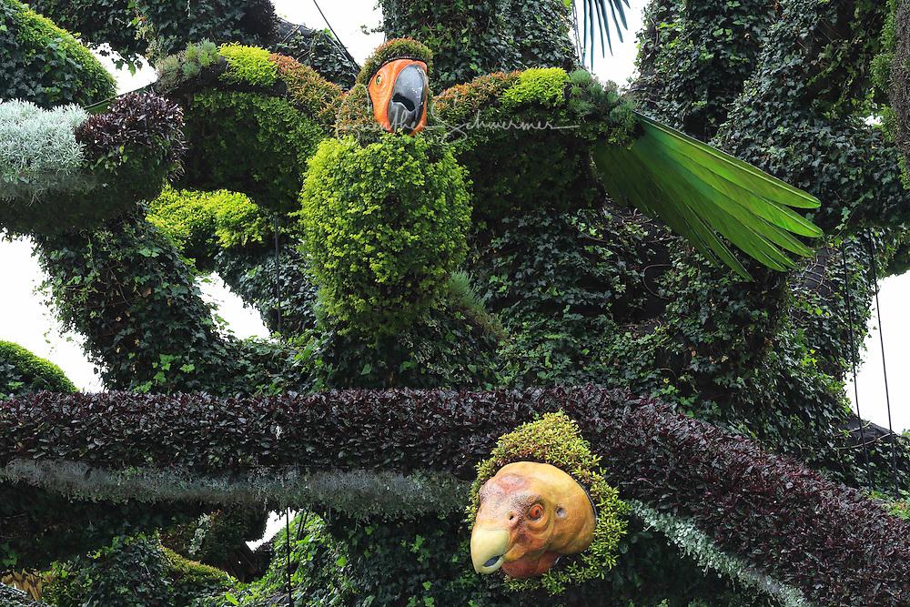 Plant sculpture, Mosaiculture Exposition, Montreal, Province Quebec, Canada