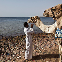 "A man adjusts the reigns on a camel at the Blue Hole (back) outside of Dahab, Egypt. The Blue Hole is notorious for the number of diving fatalities which have occurred there, earning it the sobriquet ""World's Most Dangerous Dive Site"" and the nickname ""Diver's Cemetery"". The site is signposted by a sign that says ""Blue hole: Easy entry"". Accidents are frequently caused when divers attempt to find the tunnel through the reef (known as ""The Arch"") connecting the Blue Hole and open water at about 52 m depth. According to dive experts roughly 10 people die each year. April 2012."