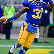 Delaware WR (#31) Phillip Thaxton with a 24 yard TOUCHDOWN celebration during The Division I FCS Championship Semifinals at Delaware. No. 3 Delaware defeats Georgia Southern 27-10 on a cold Saturday afternoon at Delaware stadium in Newark Delaware...Delaware will head to Texas for the Division I FCS National Championship Game Vs Eastern Washington eagles who defeated Villanova 41-31 friday night in Washington..