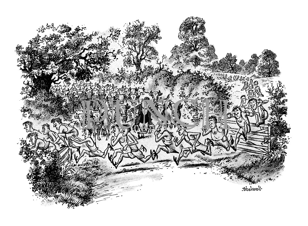 (runners racing in front of farmer and his cattle)