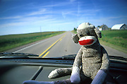 Elsie the sock monkey sits on the dash during a long cross country road trip. Iowa