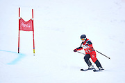 Schladming, Austria - 2017 March 19: Martina Waelde from Germany (155) competes in Alpine Skiing Competition while Special Olympics World Winter Games Austria 2017 on the &quot;Sepp-Walcher-Downhill&quot;<br /> (Slope 32) near the &quot;Tauernalm&quot; in Rohrmoos on March 19, 2017 in Schladming, Austria.<br /> <br /> Mandatory credit:<br /> Photo by &copy; Adam Nurkiewicz / Mediasport<br /> <br /> Adam Nurkiewicz declares that he has no rights to the image of people at the photographs of his authorship.<br /> <br /> Picture also available in RAW (NEF) or TIFF format on special request.<br /> <br /> Any editorial, commercial or promotional use requires written permission from the author of image.<br /> <br /> Image can be used in the press when the method of use and the signature does not hurt people on the picture.