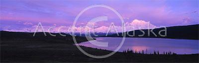 Alaska. Denali NP. Mt McKinley and Wonder lake lit by alpenglow during a June sunset.