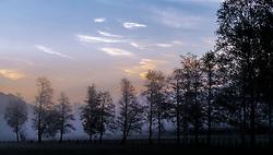 THEMENBILD - mehrere Bäume bei Sonnenaufgang im Nebel, aufgenommen am 11. Mai 2017, Kaprun, Österreich // a tree row at Sunrise in the fog at Kaprun, Austria on 2017/05/11. EXPA Pictures © 2017, PhotoCredit: EXPA/ JFK