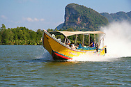 Longtail boats, or water taxis as they are sometimes called, are a great way of getting around Thailand.  The bows are usually festooned with marigolds or other flowers for good luck.