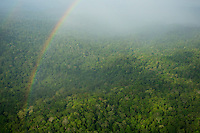 Aerial view of a rainbow over the lowland rain forest of the Mamberamo River basin, taken on flight between Papasena and Sentani, Papua, Indonesia.