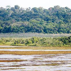 """""""Lagoa do Macuco (paisagem) fotografado em Linhares, Espírito Santo -  Sudeste do Brasil. Bioma Mata Atlântica. Registro feito em 2013.<br /> <br /> <br /> <br /> ENGLISH: Macuco Lagoon photographed in Linhares, Espírito Santo - Southeast of Brazil. Atlantic Forest Biome. Picture made in 2013."""""""