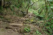 The start of the Kalalau Trail along the Na Pali Coast, Kauai, Hawaii