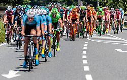 06.07.2017, Kitzbühel, AUT, Ö-Tour, Österreich Radrundfahrt 2017, 4. Etappe von Salzburg - Kitzbüheler Horn (82,7 km/BAK), im Bild Elia Viviani (ITA, Nationale Italiana) // Elia Viviani (ITA, Nationale Italiana) during the 4th stage from Salzburg - Kitzbueheler Horn (82,7 km/BAK) of 2017 Tour of Austria. Kitzbühel, Austria on 2017/07/06. EXPA Pictures © 2017, PhotoCredit: EXPA/ JFK