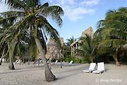 beach at Ramon's Village Resort, San Pedro, Ambergris Caye, Belize, Central America
