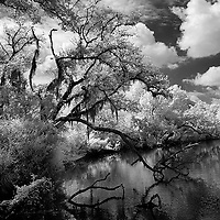 Infrared photo of Sebastian River, Florida