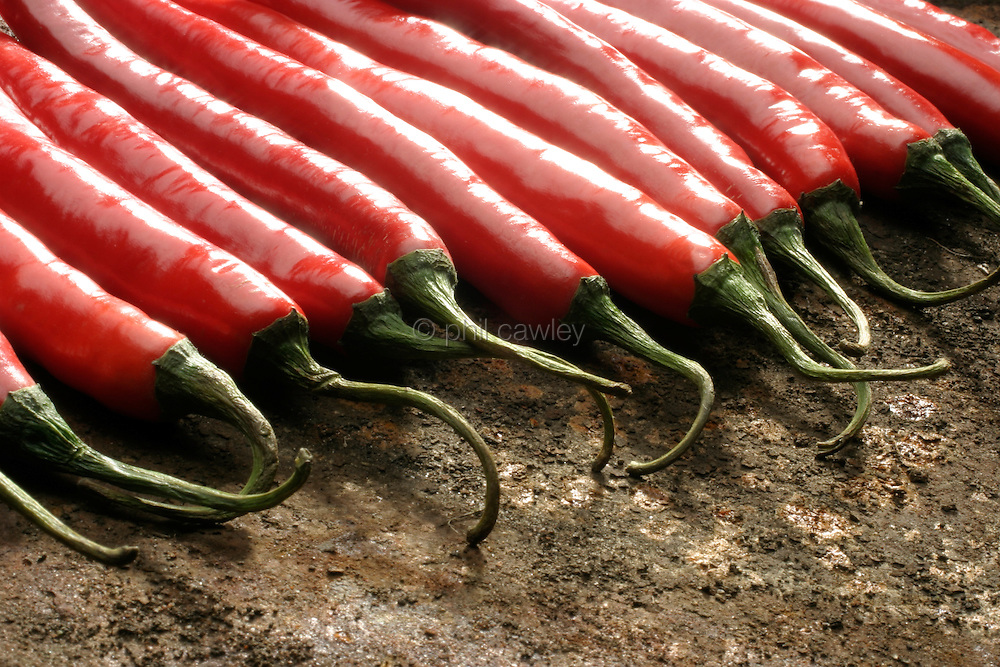 Red chilly peppers arranged in a line on a rustic background