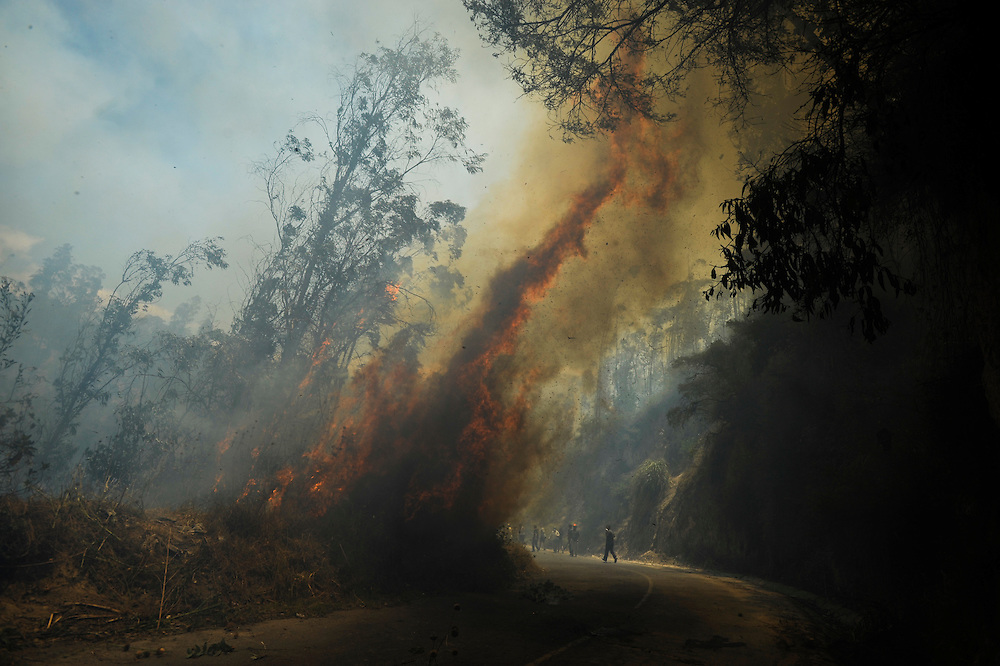 Una corriente de viento eleva una llamarada en el carretero de Zámbiza. Durante una sequía de dos meses, aproximadamente 2565 incendios forestales, (muchos presuntamente provocados) quemaron 3796 hectareas de bosques, algunas casas y muchos animales silvestres en las laderas boscosas que rodean Quito, la capital del Ecaudor.   Ningún humano murió, pero tomaran décadas antes de que las áreas afectadas se recuperen.