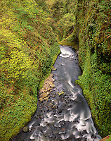 Oneonta Gorge, Columbia River Gorge National Scenic Area Oregon USA