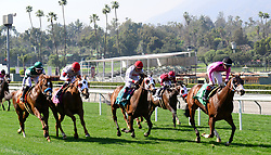 March 30, 2018 - Arcadia, California, USA - Horse Racing -  Horses head toward the first turn on the grass during the 8th race  at Santa Anita Race Track, Arcadia, California, USA, March 29, 2018...Credit Image  cr  Scott Mitchell/ZUMA Press (Credit Image: © Scott Mitchell via ZUMA Wire)