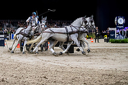 Chardon Bram, NED, Dreef Inca, Dreef Kaptiany, Favory XXXI-45-2-6, Favory Farao<br /> JIM Maastricht 2019<br /> FEI Driving World Cup™ 2019/20 <br /> © Dirk Caremans<br />  09/11/2019