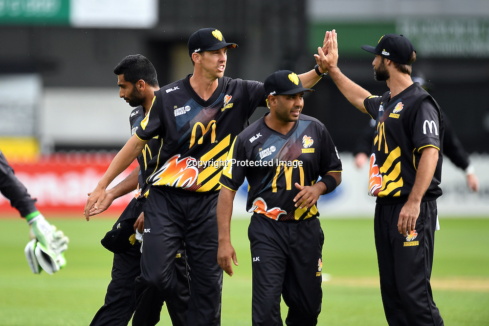 Wellington players celebrate a wicket during the McDonald's Super Smash, Wellington Firebirds vs Otago Volts, Basin Reserve, Wellington, Tuesday 03rd January 2017. Copyright Photo: Raghavan Venugopal / www.photosport.nz