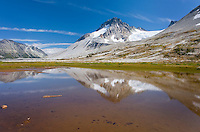 Mount Ethelweard 2819 m (9249 ft) reflected in waters of Salal Creek at Athelney Pass, Coast Mountains British Columbia Canada