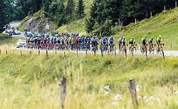 12.07.2019, Kitzbühel, AUT, Ö-Tour, Österreich Radrundfahrt, 6. Etappe, von Kitzbühel nach Kitzbüheler Horn (116,7 km), im Bild Peloton bei der Huber Höhe // during 6th stage from Kitzbühel to Kitzbüheler Horn (116,7 km) of the 2019 Tour of Austria. Kitzbühel, Austria on 2019/07/12. EXPA Pictures © 2019, PhotoCredit: EXPA/ JFK