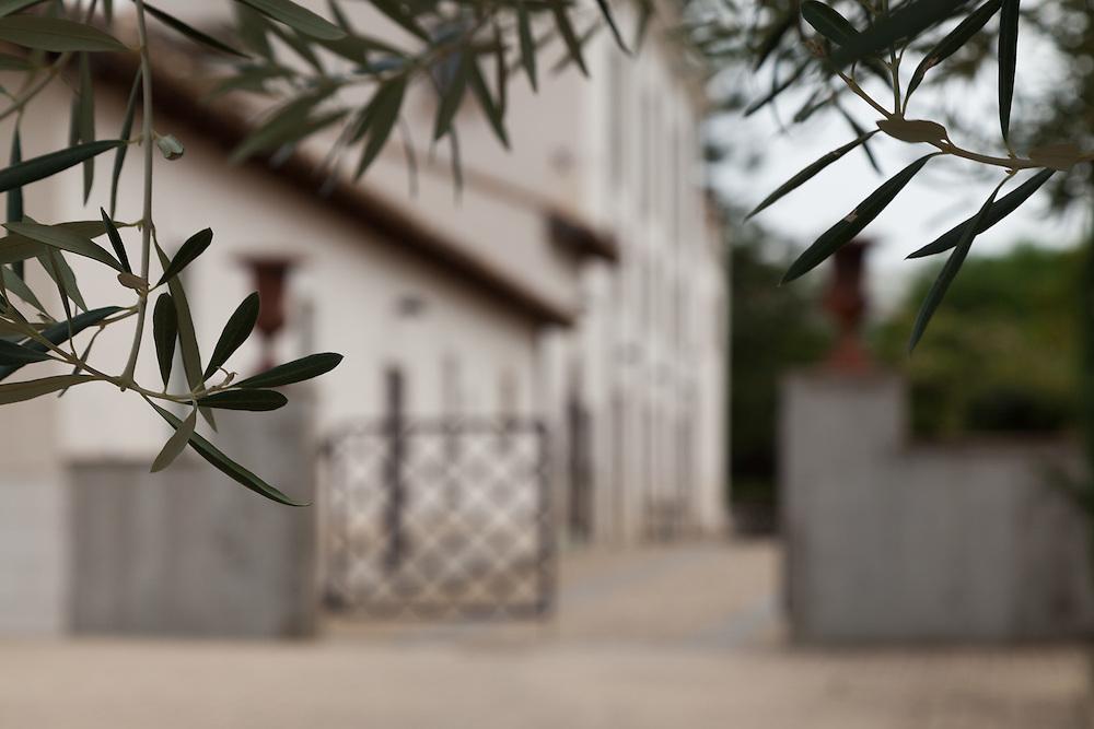 Olive Oil Estate Mandranova in Sicily