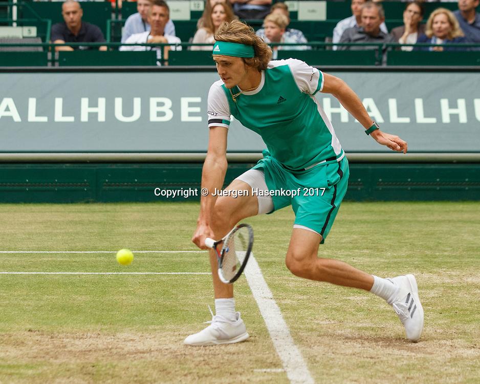 ALEXANDER ZVEREV (GER), Final, Endspiel<br /> <br /> Tennis - Gerry Weber Open - ATP 500 -  Gerry Weber Stadion - Halle / Westf. - Nordrhein Westfalen - Germany  - 25 June 2017. <br /> &copy; Juergen Hasenkopf