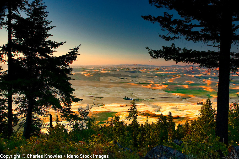 This shot taken from Kamiak Bute in Eastern Washington State looking North