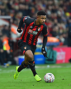 Lys Mousset (9) of AFC Bournemouth during the The FA Cup 3rd round match between Bournemouth and Brighton and Hove Albion at the Vitality Stadium, Bournemouth, England on 5 January 2019.