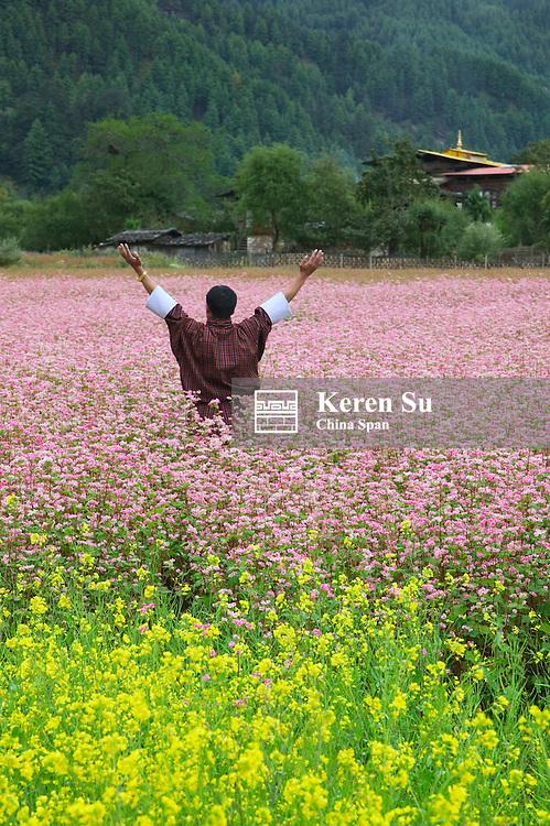 Farmer wearing traditional ger in farmland of canola and buckwheat, Bumthang, Bhutan
